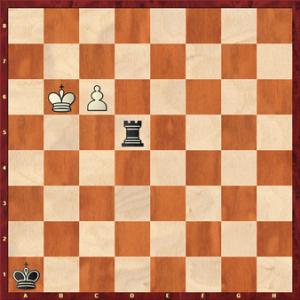 آخر بازی رخ | پازل های آخر بازی | حل پازل های شطرنج | اتود آخر بازی سا آودرا